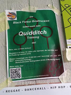 Quidditch-flyer