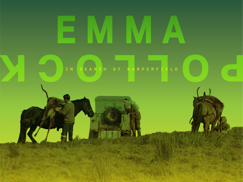 Album der Woche: Emma Pollock –  In Search Of Harperfield