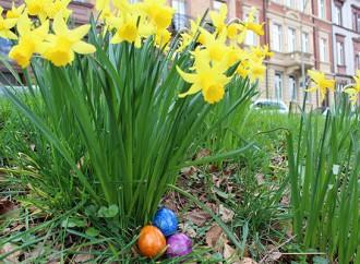 10 Dinge, die du noch nicht über Ostern wusstest