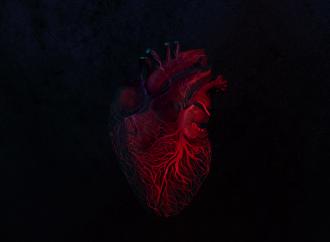 Album der Woche: Mick Jenkins – The Healing Component