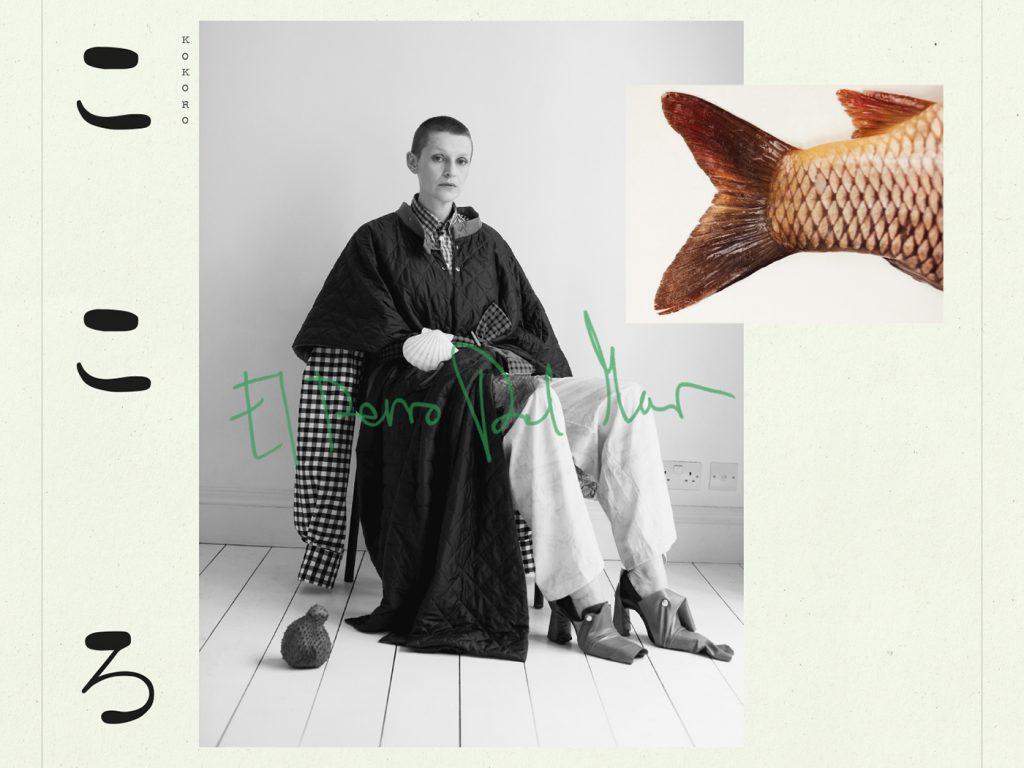 Album der Woche: El Perro Del Mar – KoKoro