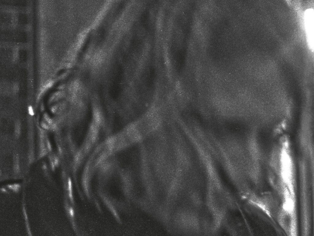 Album der Woche: Ty Segall – Ty Segall