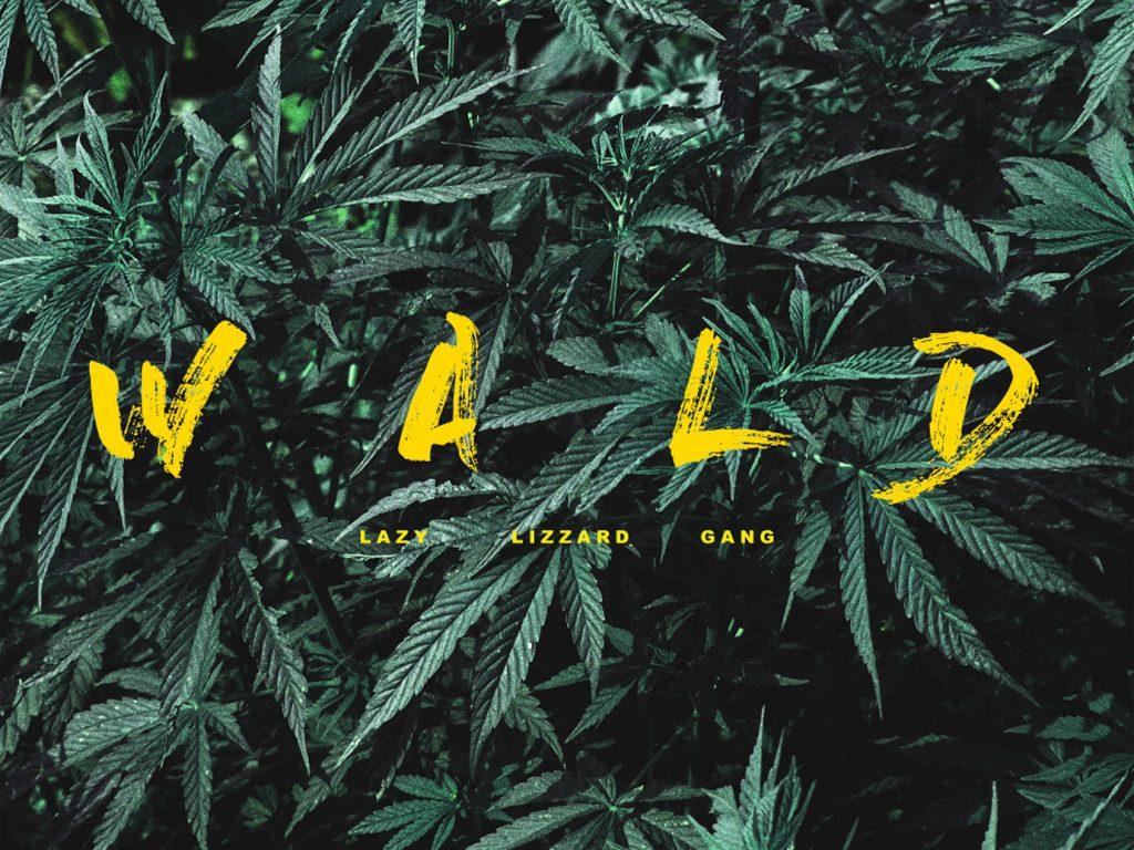 Album der Woche: Lazy Lizzard Gang – Wald