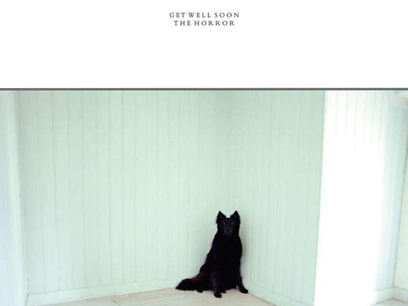 Album der Woche: Get Well Soon – The Horror
