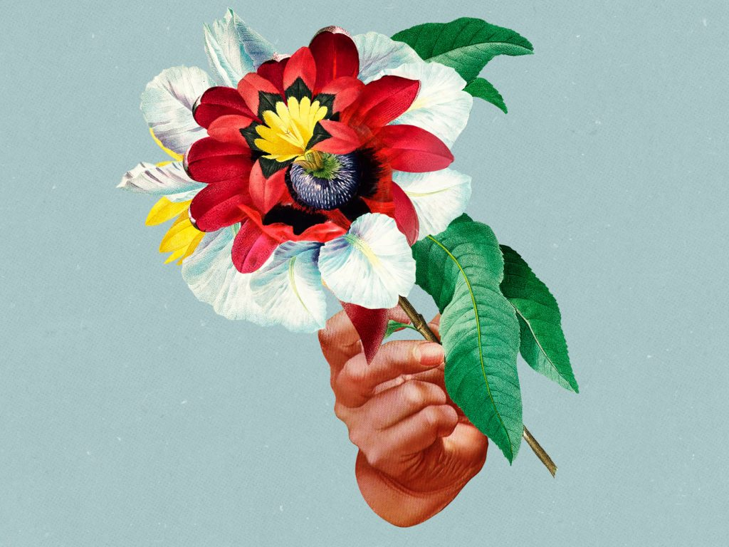 Album der Woche: Maribou State – Kingdoms In Colour