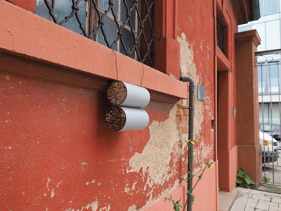 Wohnen wie eine Bienenkönigin