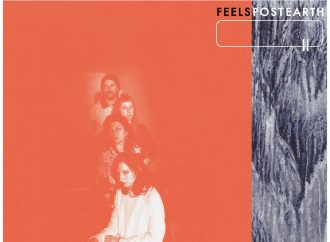 Album der Woche: Feels – Post Earth