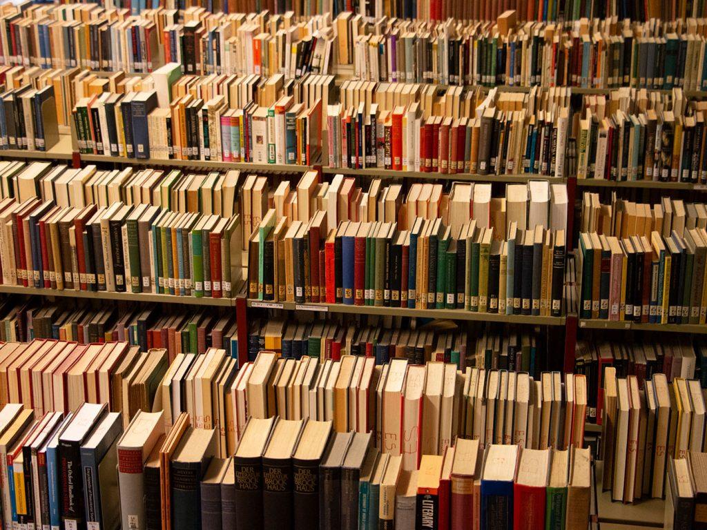Die Hüterinnen der Bücher