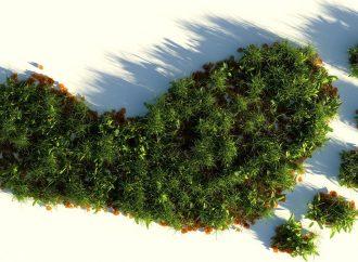 einBlick #3 Die Wahrheit wird euch nachhaltig machen