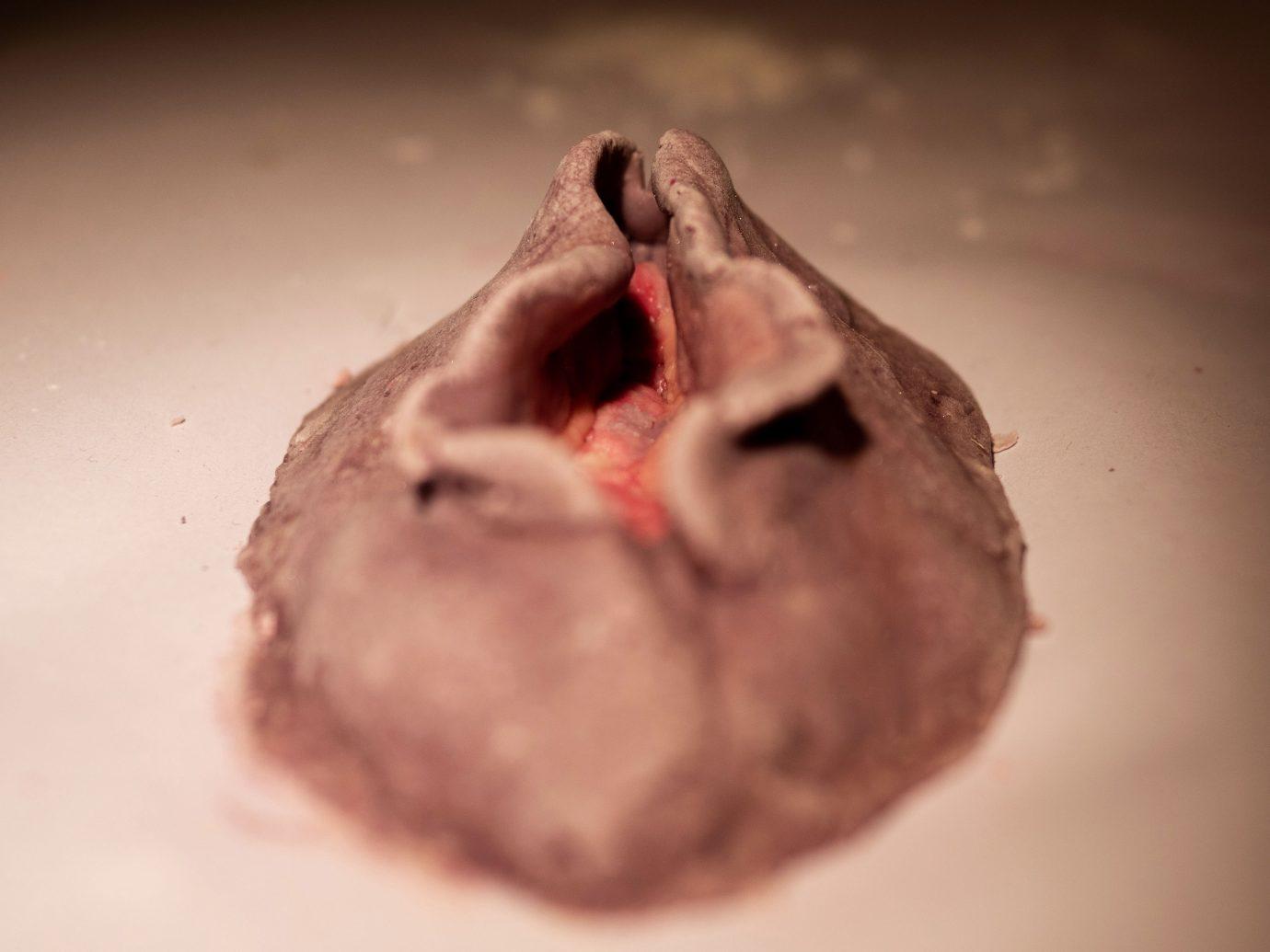 Vulva crafting