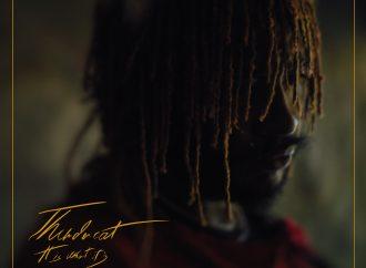 Album der Woche: Thundercat – It Is What It Is