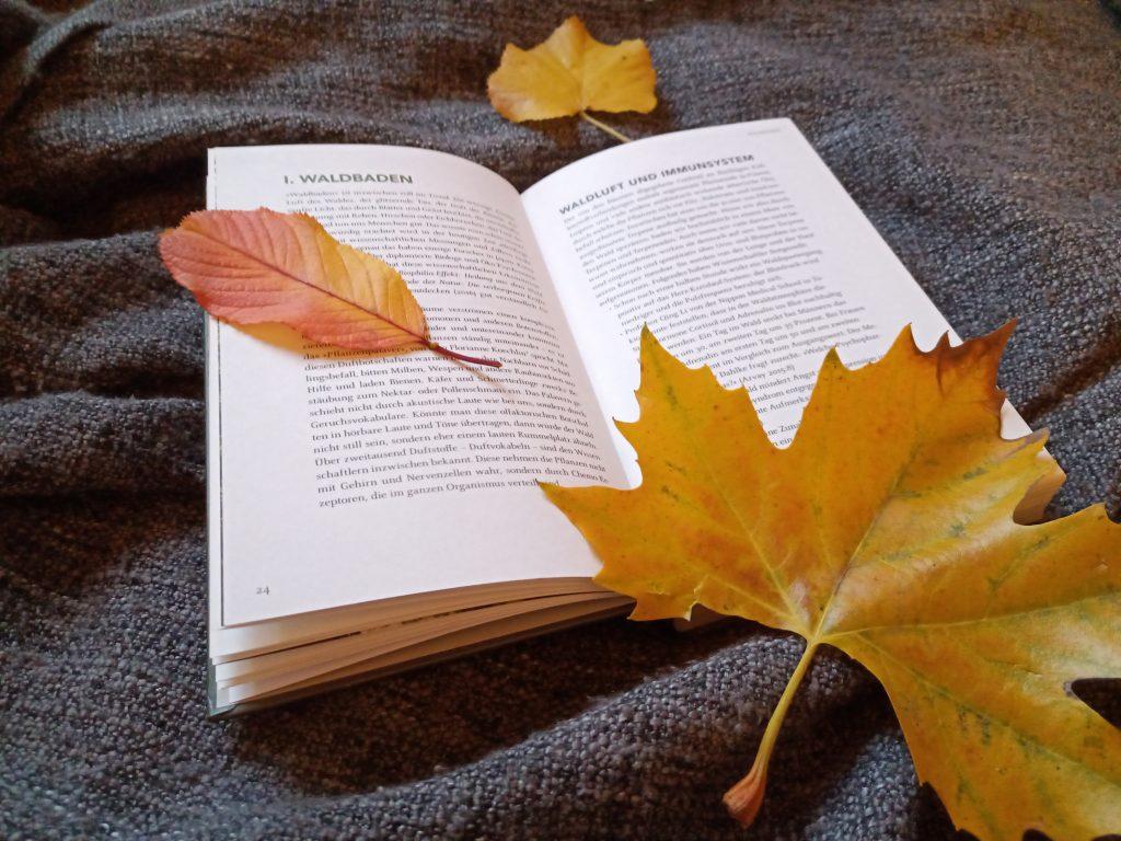 Bücher für kalte Tage