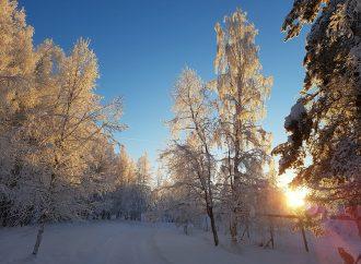 """Die Bedeutung des Songs """"White Christmas"""""""